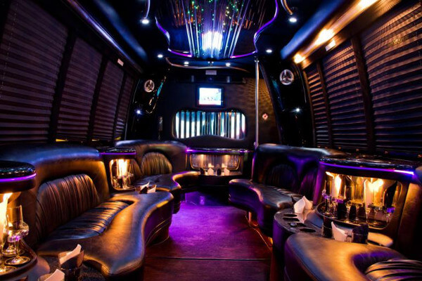 15 Person Party Bus Rental Des Moines